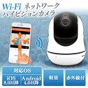 Wi-Fi ネットワークハイビジョンカメラ HDカメラ カメ...