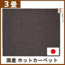 【国産★】ホットカーペット 3畳 国産 本体 WHD-301...