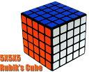 5X5X5 プロフェッサーキューブ ルービックキューブ Rubik's Cube T 新品 送料無料