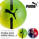 フットサルボール PUMA プーマ エヴォ サラ ボール J 4号球 フットサル サッカー クラブ 部活 evo SARA BALL J 2017春新作
