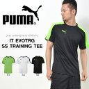 半袖 プラクティスシャツ プーマ PUMA メンズ IT EVOTRG SS トレーニング Tシャツ トレーニングシャツ スポーツウェア ゲームシャツ シャツ ウェア サッカー フットサル 2017春新作 得割20