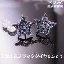【在庫処分】【送料無料】K18WGスターモチーフダイヤブラックパヴェ0.5ctピアス■7672