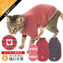 【送料込】【2020年冬新作】【猫専用】猫用ウォームボーダー...