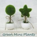 楽天エルムンドミニプランツ(ラウンド・スター)【合成観葉植物 造花 植木 丸型 星型 グリーン 飾り用 おしゃれ かわいい 小さい プラスチック製 陶器鉢】