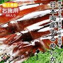 【BBQ】日本海するめいか4ハイ獲れたて船上凍結海鮮 バーベキュー バーベキューセット bbqセット