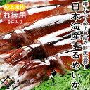【BBQ】日本海するめいか8ハイ【送料無料】お徳用獲れたて船上凍結冷蔵便・常温便との同梱不可海鮮 バーベキュー バーベキューセット bbqセット