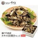ガンガン焼き 海鮮 BBQセット バーベキューセット 牡蠣缶 3kg 30~40個 かき カキ【冷凍便】