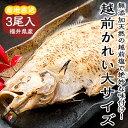 関西テレビ放送「よ〜いドン!」で紹介されました!大きめで肉厚♪越前カレイ一塩干し食べ応え抜群の3尾セット