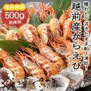 【冷凍便】越前産 がらえび 500g 生食用...