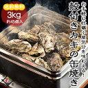 《あす楽》【BBQ】カキの缶焼きセット【3kg】【送料無料】たっぷり3キロ(45〜55個)牡蠣 冷凍海鮮 バーベキュー バーベキューセット bbqセット