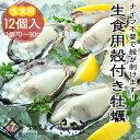 殻付きカキ 12個入り 新鮮生かき【冷凍便】解凍後 生牡蠣として食べられます