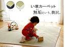 「素肌草」使用 純国産 い草ラグカーペット『f-muku』140x140cm kh818-140[送料無料][te]