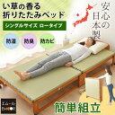 日本製 い草畳の折りたたみベッド シングル ワイド ハイタイプ サイズ木製 収納 い