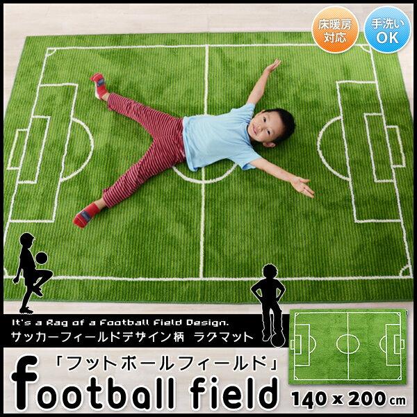 Soccer Field Carpets - Carpet Vidalondon