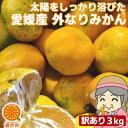 全国お取り寄せグルメ愛媛食品全体No.27