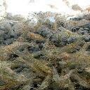 【数量限定】スジエビ100匹 エビ 飼育用・餌用にも! 川魚 【2点以上5000円以上ご購入で送料無料】