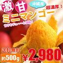 ※2018年収穫分 販売開始!!【送料無料】沖縄県産/ミニマンゴー500g前後(3玉から8玉入り)