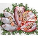 【送料込み】岡富商店 干物「一日漁」 島根県沖一夜干し 恵比寿セット