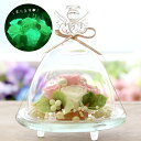プリザーブドフラワー ギフト 光る ガラスドーム エンジェル 誕生日のサプライズプレゼントに最適!  ...