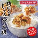 国産 お漬物【梅肉入りしょうが大根】300g(150g×2袋入)ご飯のお供 生姜 だいこん 刻