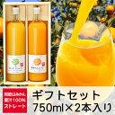 三友農園 果汁100%ストレート 和歌山みかんジュース/オレンジジュース(750ml×2本)無添