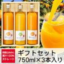 三友農園 果汁100%ストレート 和歌山みかんジュース/オレンジジュース(750ml×3本)無添