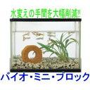 バイオミニブロック★水槽の水質浄化!