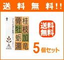 【第2類医薬品】 【あす楽対応!】【送料無料!! 5個セット...