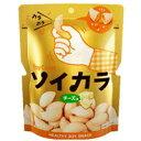 【大塚製薬】ソイカラ チーズ味 27g