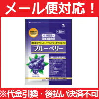 Kobayashi pharmaceutical co., Ltd. nutrition supplementary food Blueberry 30 grain ( approx. 30 min ) fs3gm