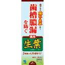 小林製薬 薬用 生葉(しょうよう) 薬用ハミガキ 100g【P25Jan15】
