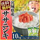 【新米】【30年度産】ササニシキ 5kg×2送料無料 30年...