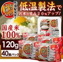 【ご飯パック】低温製法米のおいしいごはん 120g×40食パック送料無料 パック米 レトルトご飯 メ...