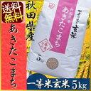 玄米 5kg 送料無料 秋田県産 あきたこまち 5kg一等米100% アイリスオーヤマ 食べ切りサイズ 一人暮らし