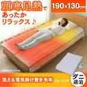 TEKNOS 電気毛布 洗える 敷き毛布 グリーン