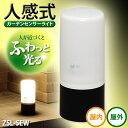 電池式ガーデンセンサーライト ZSL-SEW ブラック/ホワ...