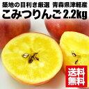 フルーツの目利きが厳選!『青森県津軽産・こみつりんご 2.2kg』 【リンゴ】【ギフト】 【送料無料】【内祝い】【楽ギフ_のし宛書】北海道九州は300円沖縄・離島は1000円の送料が掛かります