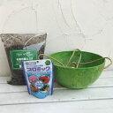草花用 アートストーン ハンギング ボール 直径25cm(ライム)と土と肥料のセット