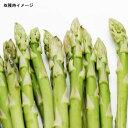 野菜の苗/アスパラガス:ハイデル1年生苗3号ポット 4株セット
