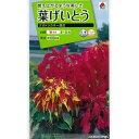 葉げいとう:クオドリカラー混合 タキイ 花タネ