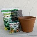野菜用 バッサム25cm(8号)と土と肥料のセット