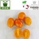 野菜の苗/生食用イタリアントマト無農薬シリーズ:イタリアンプラムオレンジ3.5号ポット2株セット