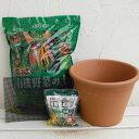 野菜用 バッサム31cm(10号)と土と肥料のセット