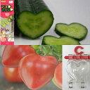 【ラッキーシール対応】デコきゅう:ハート1本とハートのトマト...