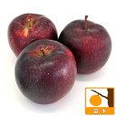 果樹の苗/リンゴ:秋映(あきばえ)4〜5号ポット