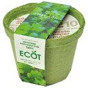エコット(S):パクチー栽培セット 2個セット