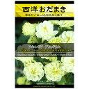 アクイレギア(西洋オダマキ)ウィンキーシリーズダブル:ホワイトホワイト 花タネ