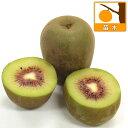 果樹の苗/キウイ2種受粉樹セット:紅妃(コウヒ)と早雄(ソウユウ)4〜5号ポット(メス木・オス木)