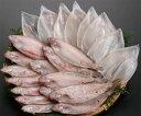 島根半島新鮮便[8]だんだん『笹カレイセット』(B)(笹カレイ+白いか)【クール・包材代含む】