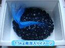 有機JAS認定米 コシヒカリ 白米 2kg 無農薬 有機栽培 はで干し 天日乾燥 島根県川本町産 2019年産 単一生産者米 送料無料